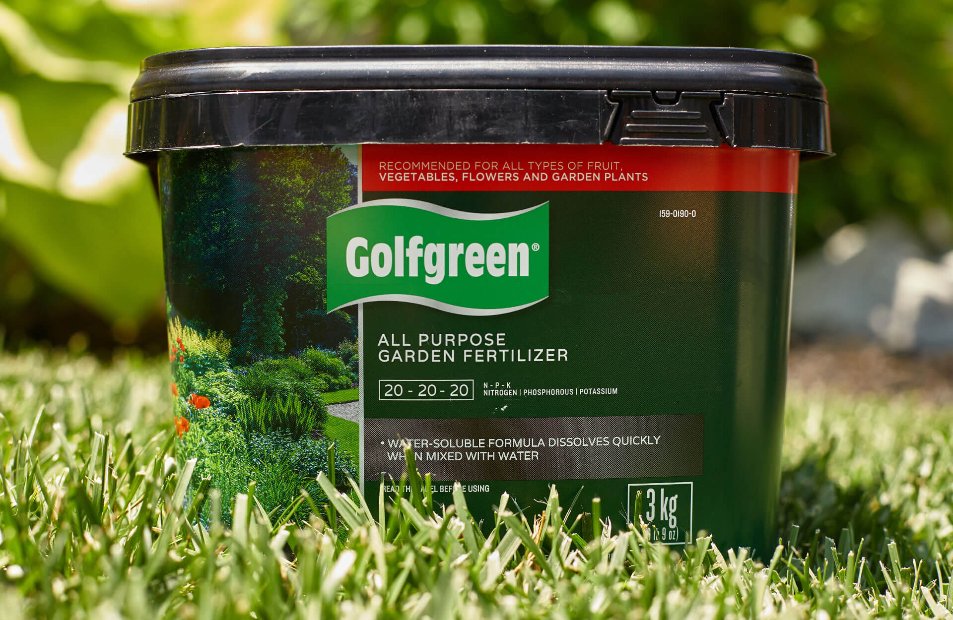 Canadian Tire - Golfgreen